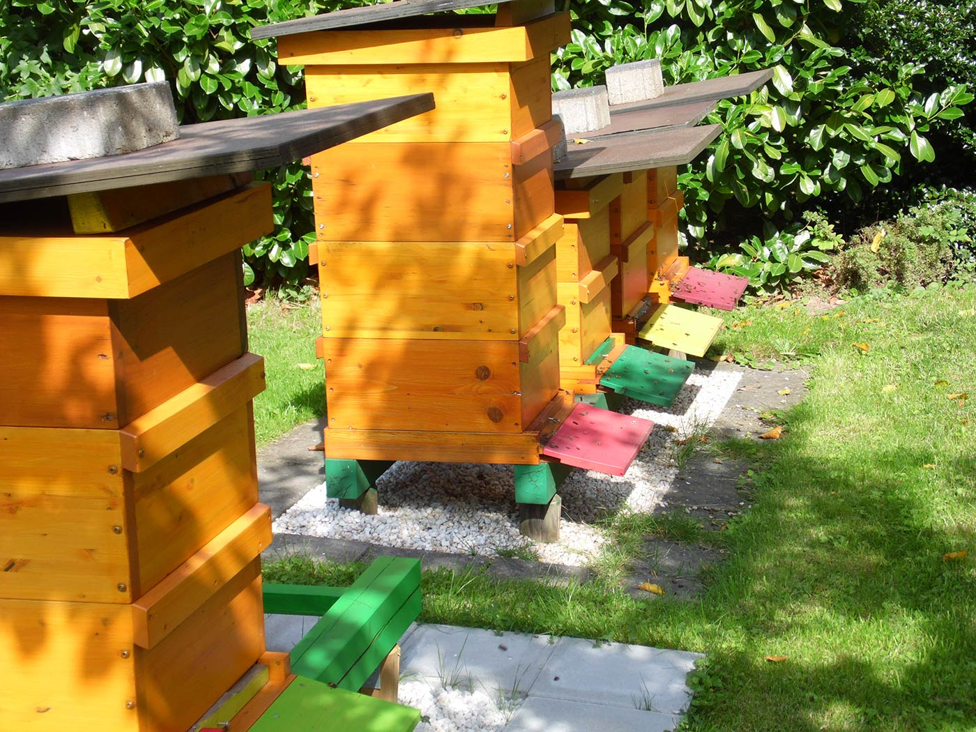 Fünf Bienenstöcke von Alfred Bauer im Sonnenlicht