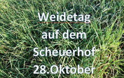 Am 28.10.2018 Weidetag auf dem Scheuerhof